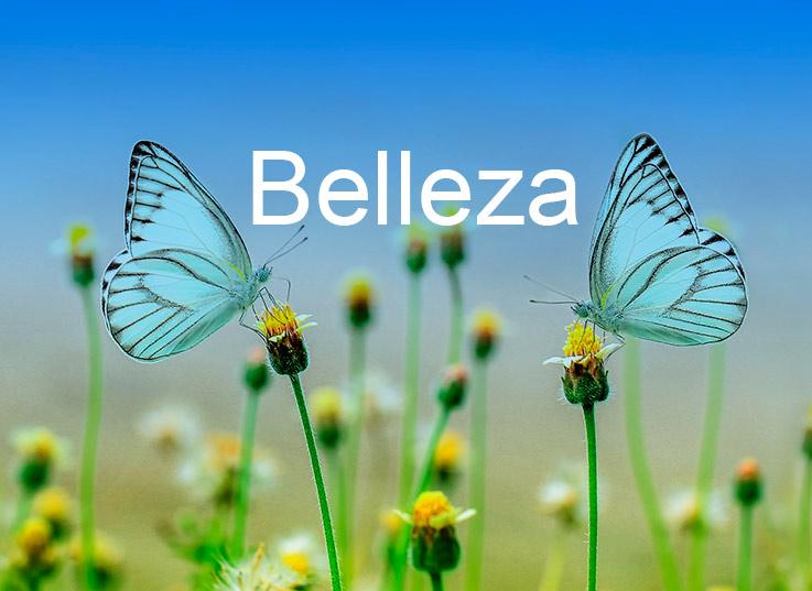 Belleza productos Aloe Vera